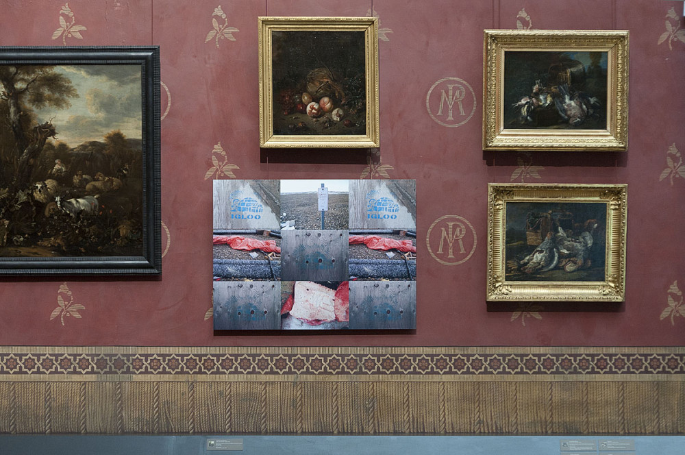 Texture, installation, Musée de Picardie (2011)