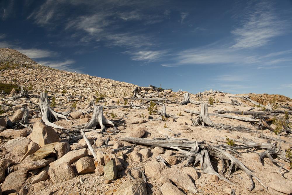 03 Mount Porphyre, 2012