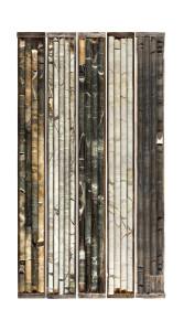 Cinq casiers de carottages / Five Core Samples, 2014, (43 x 24 inches).